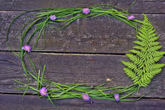 Frame with flowers clover and  fern leaves. On a wooden background Royalty Free Stock Photography