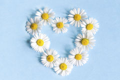 Frame of flowers daisies in the shape of a heart Stock Photography