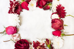 Frame of flowers. Decorations of red roses, buds,  white chrysan Royalty Free Stock Images