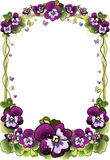 Frame of flowers Royalty Free Stock Photos