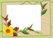 Frame with flowers on the green background. White frame with flowers on the green background Stock Photography