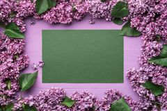 Frame of lilac flowers and space for text Royalty Free Stock Images