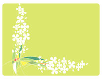 Frame with Flowers and lines. Frame with white flowers and colorful lines.  Light green area to add text or other images - illustrated vector art work Stock Photo