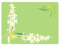 Frame with Flowers and lines Royalty Free Stock Photos