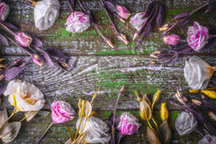 Frame of flowers on the old wooden background Royalty Free Stock Photos