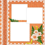 Frame with flowers on the orange background. White frame with flowers and plants on the orange background Royalty Free Stock Image