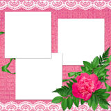 Frame with flowers on the pink background. White frame with flowers and plants on the pink background Royalty Free Stock Photo