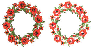 Frame Flowers Poppy Wreath Stock Photos