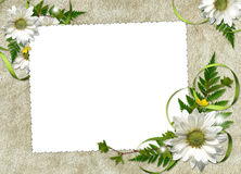 Frame with flowers and ribbons Stock Photos