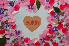 Frame of flowers with sorry word. Summer flowers frame with sorry word. Flowers on blue background stock image