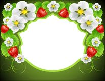 Frame of flowers and strawberries Stock Photography