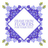Frame of flowers for text. Violet flowers Delphinium Royalty Free Stock Image