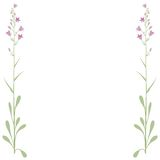 Frame flowers (vector) Royalty Free Stock Photo