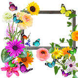 Frame fo memory. Woden blank picture ( photo) frame with butterflies (copy space for photo, picture or text). Artistic background. Isolated on white Stock Image