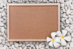 Frame & frangipani. Frame with flowers on stones Royalty Free Stock Images