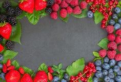 Frame  of fresh berries Stock Images