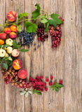 Frame of fresh colorful fruits, above view Royalty Free Stock Photos