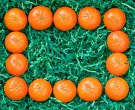 Frame of fresh mandarins Stock Image