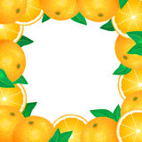 Frame of fresh oranges. Natural bio fruits, healthy organic food Stock Images