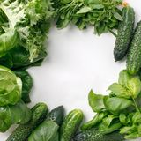 Frame of fresh organic vegetables and herbs on white background. Healthy natural food on table with copy space. Cooking. Ingredients top view, mockup for menu royalty free stock photos