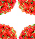 Frame of fresh red strawberries on the corners isolated Stock Image