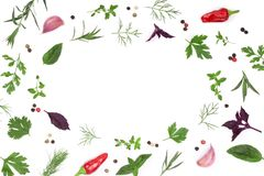 Frame of fresh spices and herbs isolated on white background with copy space for your text. Dill parsley basil. Top view. Frame of fresh spices and herbs Stock Photo