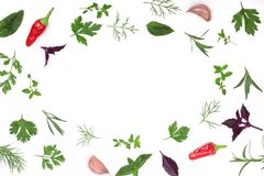 Frame of fresh spices and herbs isolated on white background with copy space for your text. Dill parsley basil. Top view. Frame of fresh spices and herbs Stock Photography