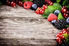 Frame with fresh summer berries Royalty Free Stock Photo