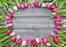 Frame of fresh tulips arranged on old wooden background Royalty Free Stock Photo