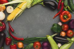 Frame of fresh vegetables on grey background with copy space Royalty Free Stock Photography