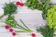 Frame from fresh vegetables and herbs. Fresh dill, arugula, parsley, basil, onion, lettuce and red radish on wooden background with copy space. Eat better Royalty Free Stock Image