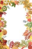 Frame From Autumn Sheet Stock Photos