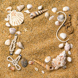Frame From Various Shells On Sand Royalty Free Stock Images