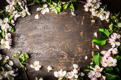 Frame of fruit trees flowers on rustic background Stock Photo