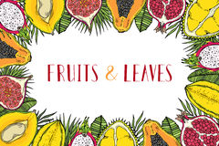 Frame of fruits and tropical leaves. With the words Healthy food. White background. Royalty Free Stock Images