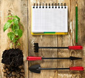 Frame with garden tools, seedlings Royalty Free Stock Image