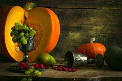 The frame of the gifts of autumn pumpkins, corn, fall leaves, tomatoes, red berry cranberry and grape. Stock Images