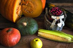 The frame of the gifts of autumn pumpkins, corn, fall leaves, tomatoes, red berry cranberry and grape. Stock Photos