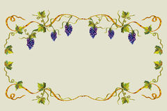 Frame with grape Stock Photo