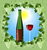 Frame of grape and a glass of wine. In a green frame of the vine in the sun a bottle of red wine and a glass Royalty Free Stock Photos