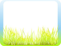 Frame with grass. Decorative gradient colored frame with fresh green grass Royalty Free Stock Images