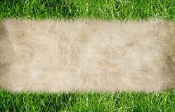 Frame from grass Royalty Free Stock Photo