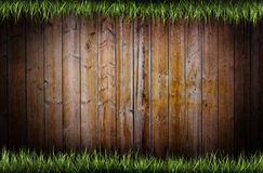 Frame of grass Royalty Free Stock Images