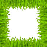 The frame of grass Stock Photos