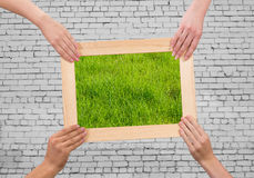 Frame with grass Royalty Free Stock Photo