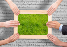 Frame with grass Stock Photos