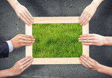 Frame with grass Stock Photo