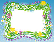 Frame with the grass and flowers Royalty Free Stock Photos