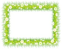 Frame with grass & flowers Stock Photos