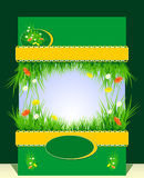 Frame with grass and  flowers for presentation Stock Images